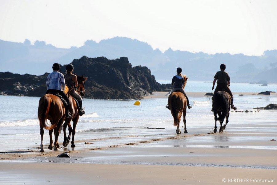 cheval plage Côtes d'Armor